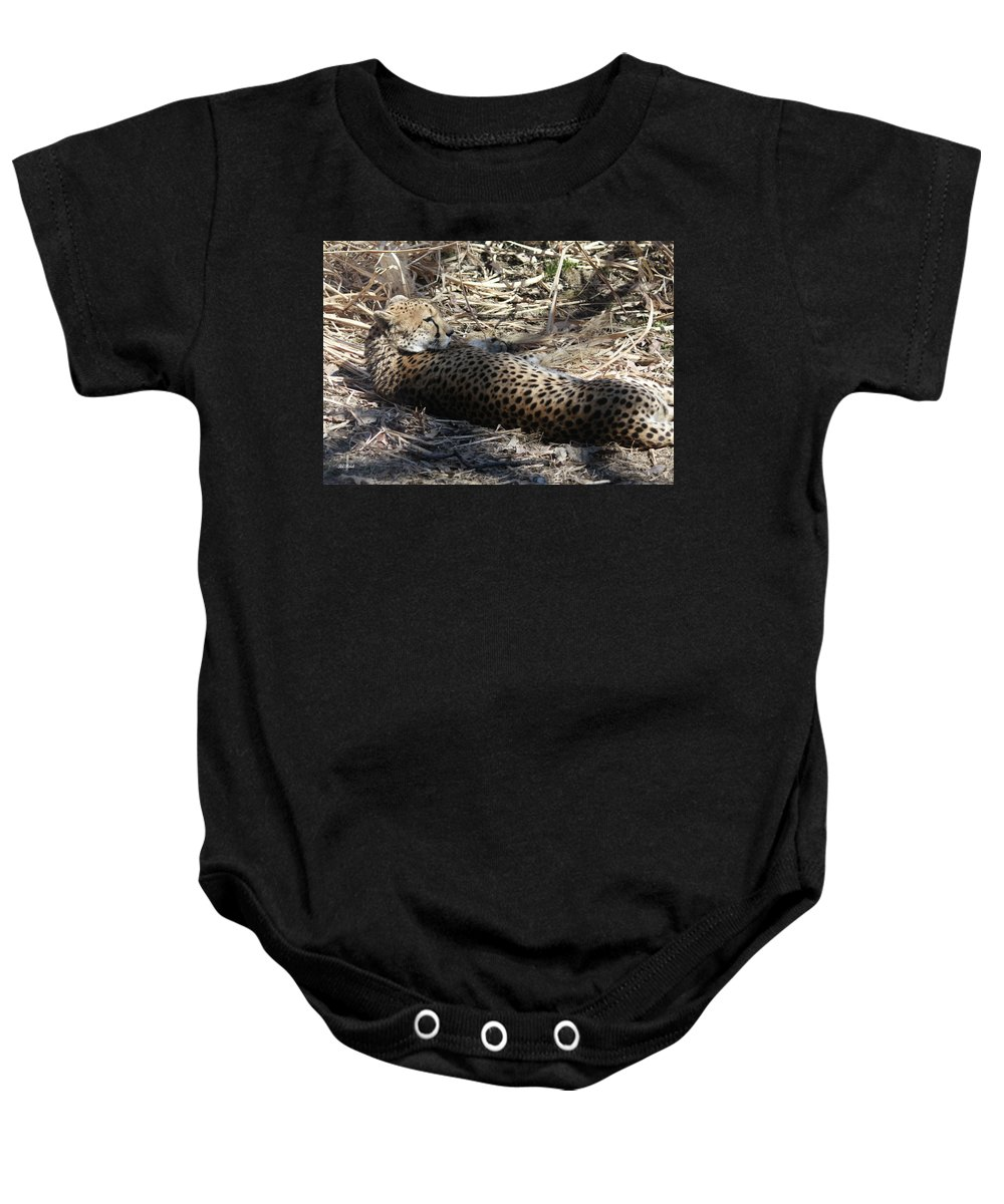 Maryland Baby Onesie featuring the photograph Cheetah Awakened by Ronald Reid