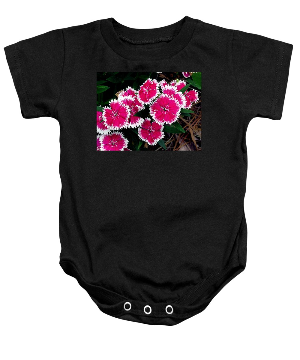 Flowers Baby Onesie featuring the photograph China Pinks 1 by J M Farris Photography