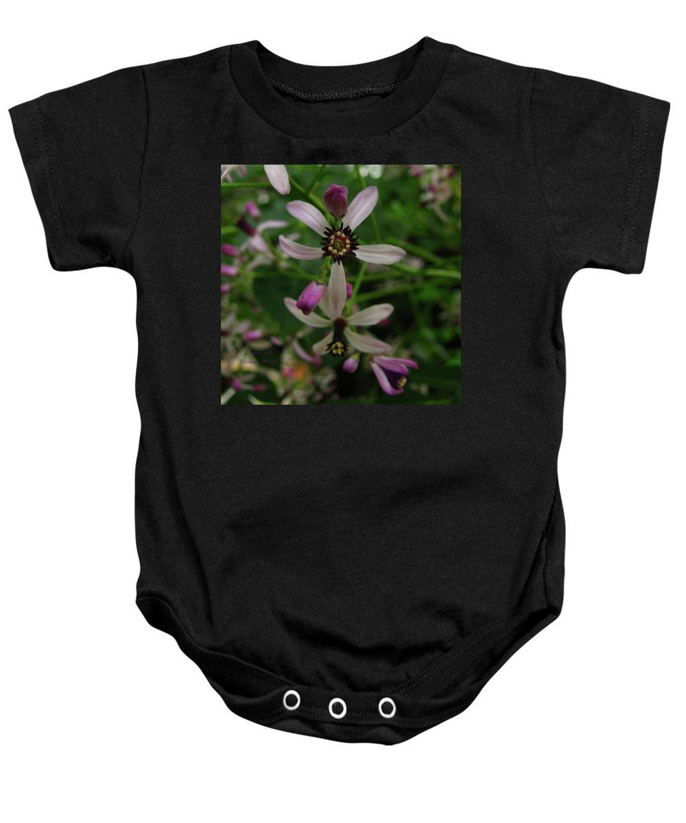 Flower Baby Onesie featuring the photograph Chock Cherry Flower by Donna Brown
