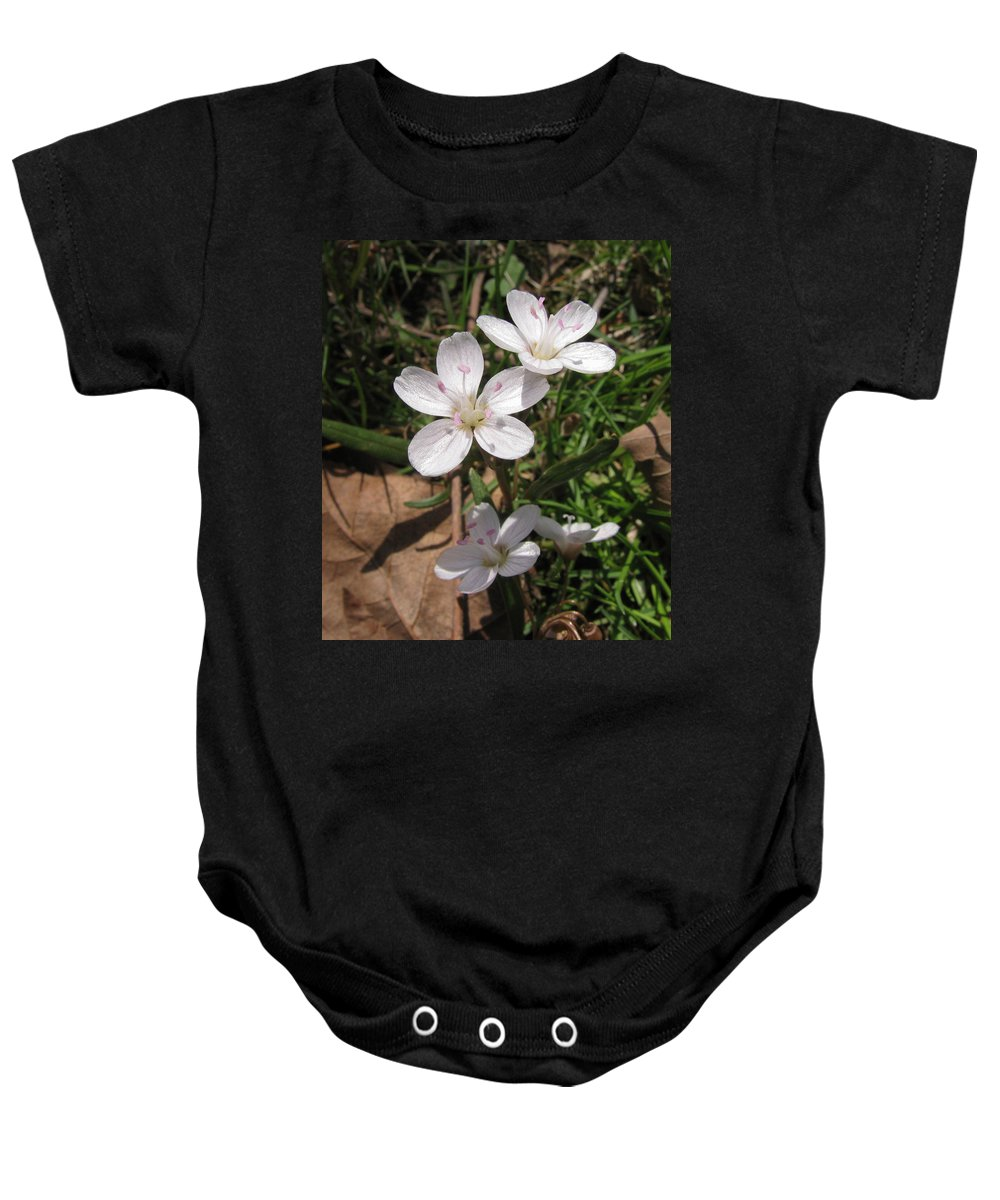 Flower Baby Onesie featuring the photograph Claytonia by Donna Brown