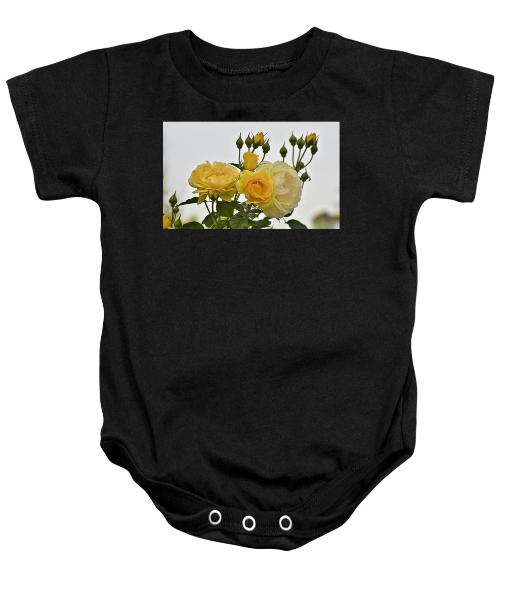 Linda Brody Baby Onesie featuring the photograph Cluster Of Yellow Roses by Linda Brody