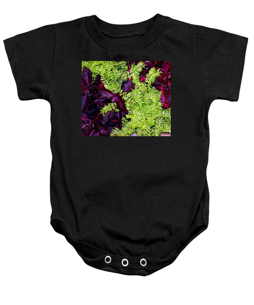 Plants Baby Onesie featuring the photograph Color Combo by Deborah Crew-Johnson
