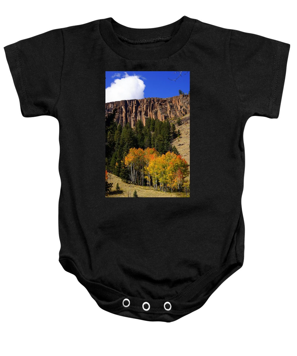 Fall Colors Baby Onesie featuring the photograph Colorful Canyon by Marty Koch