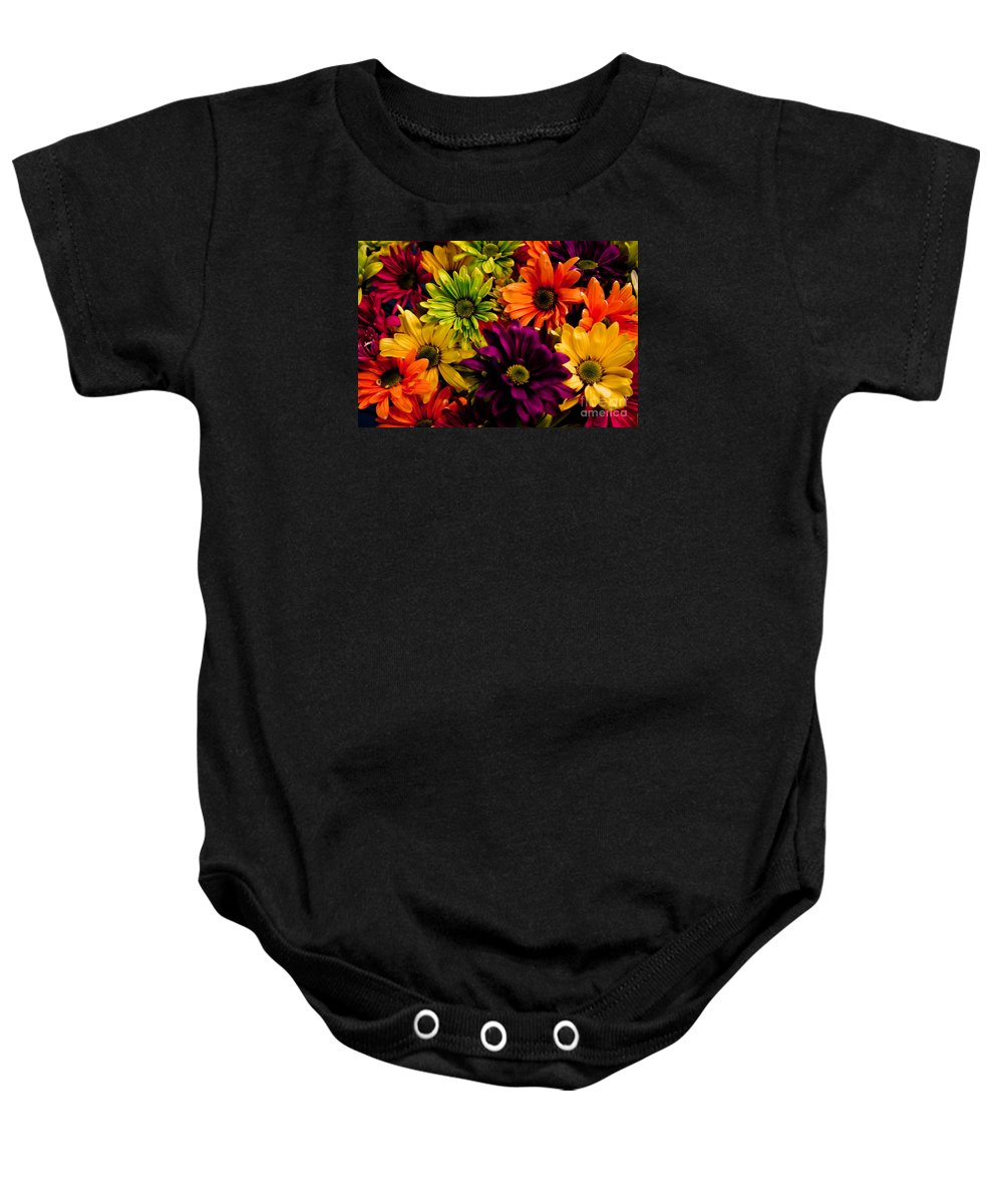 Daisies Baby Onesie featuring the photograph Colorful Daisies by Robin Lynne Schwind