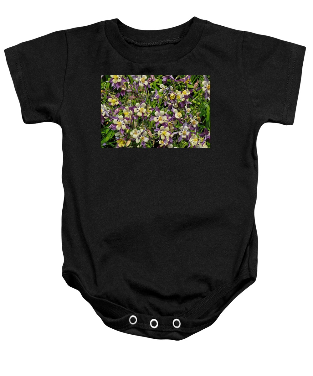 Aquilegia Baby Onesie featuring the photograph Columbine Flowers by Merrimon Crawford