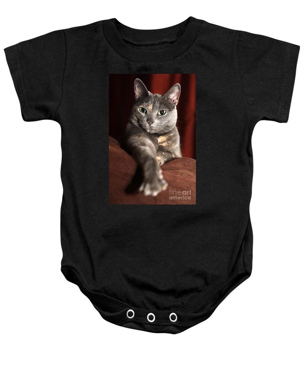 Kitty Baby Onesie featuring the photograph Come Here by Amanda Barcon