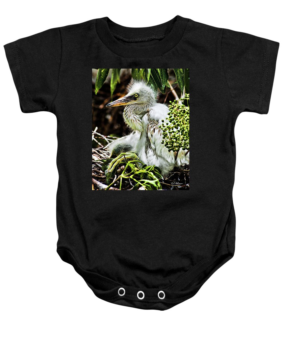 Egret Baby Onesie featuring the photograph Come On Feathers by Christopher Holmes