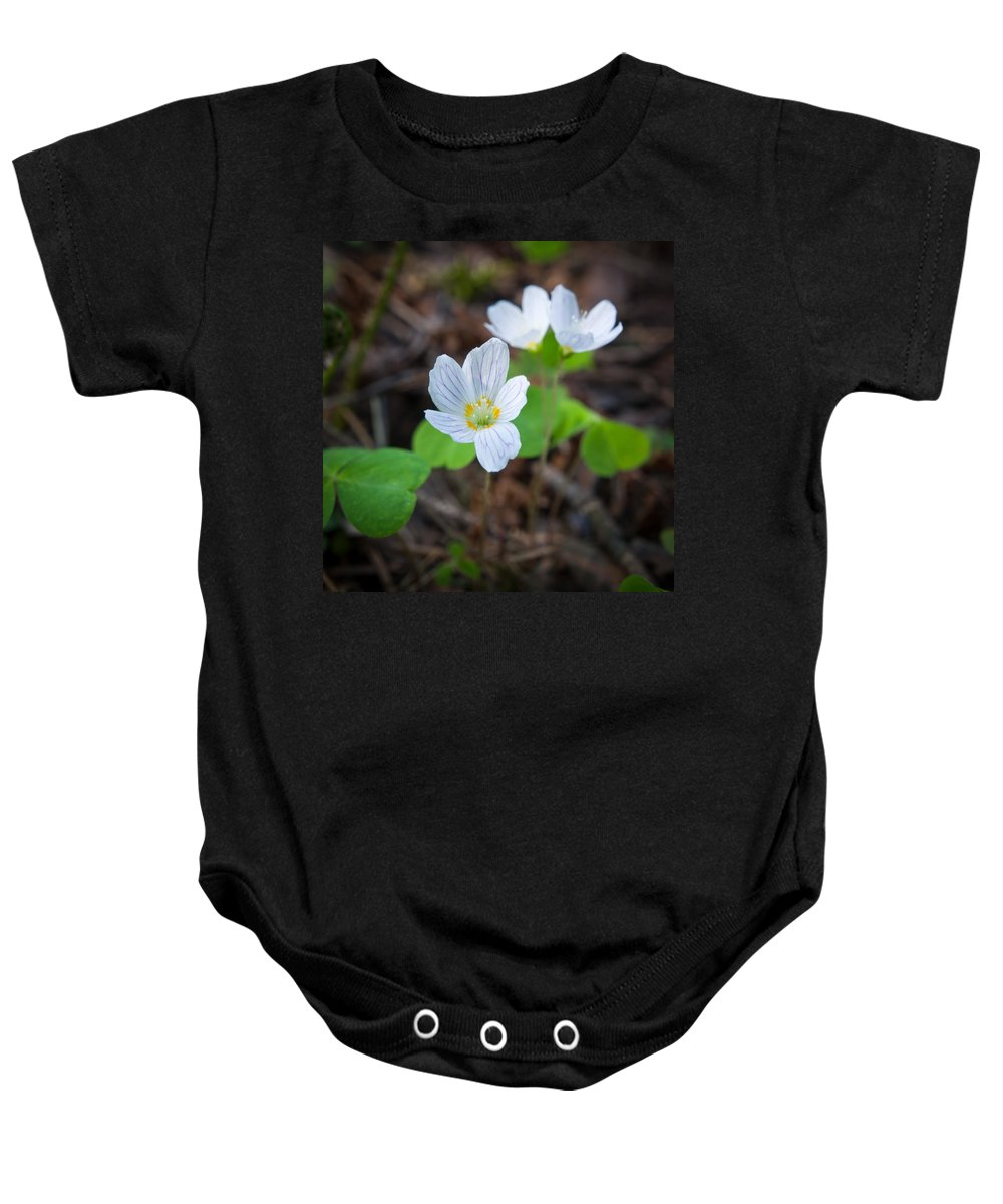Lehtokukka Baby Onesie featuring the photograph Common Wood Sorrel by Jouko Lehto