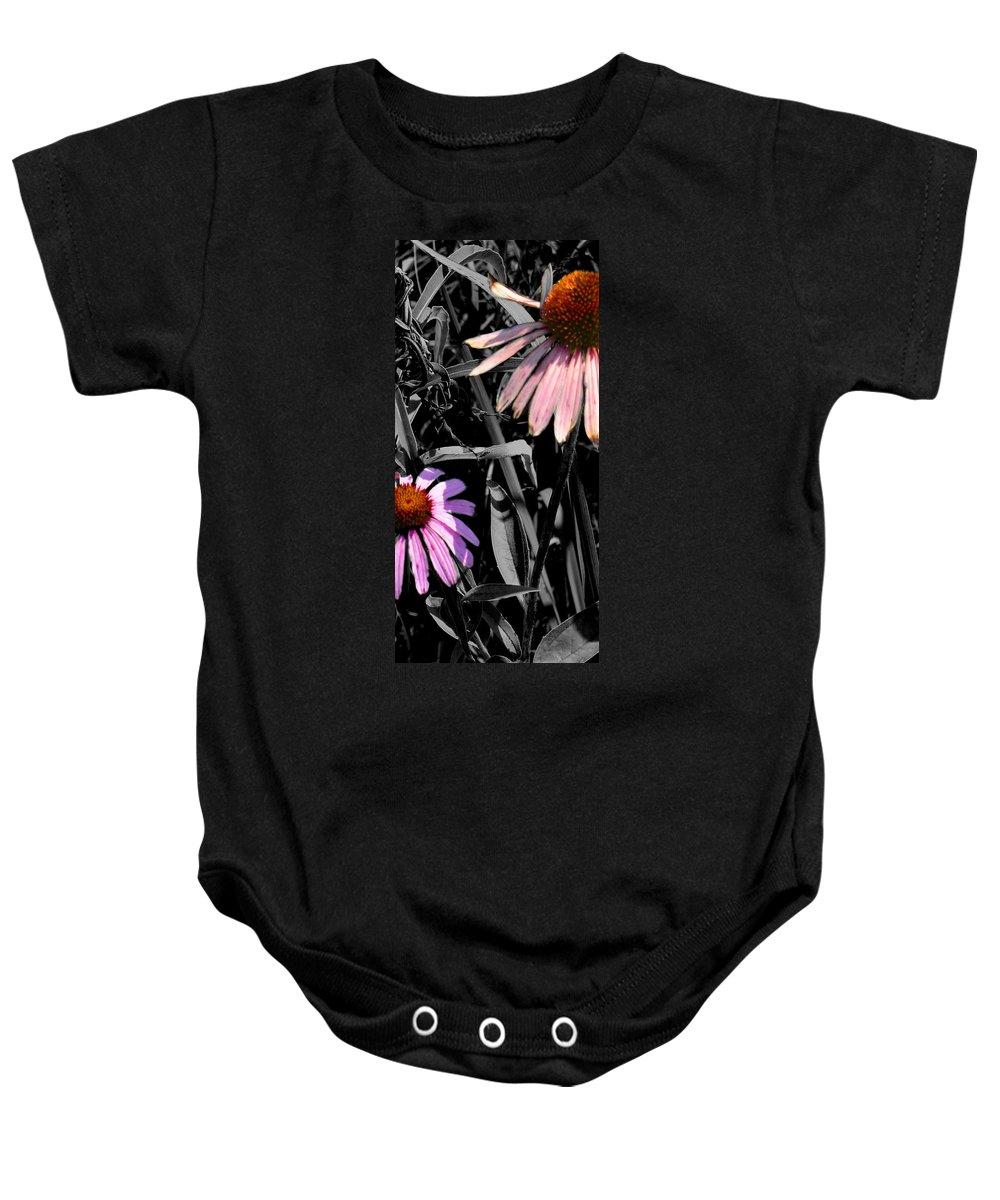 Purple Cone Flower Baby Onesie featuring the photograph Cone Flower Tapestry by Steve Karol