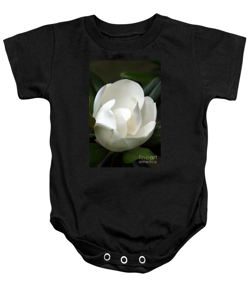 Magnolia Baby Onesie featuring the photograph Container by Amanda Barcon