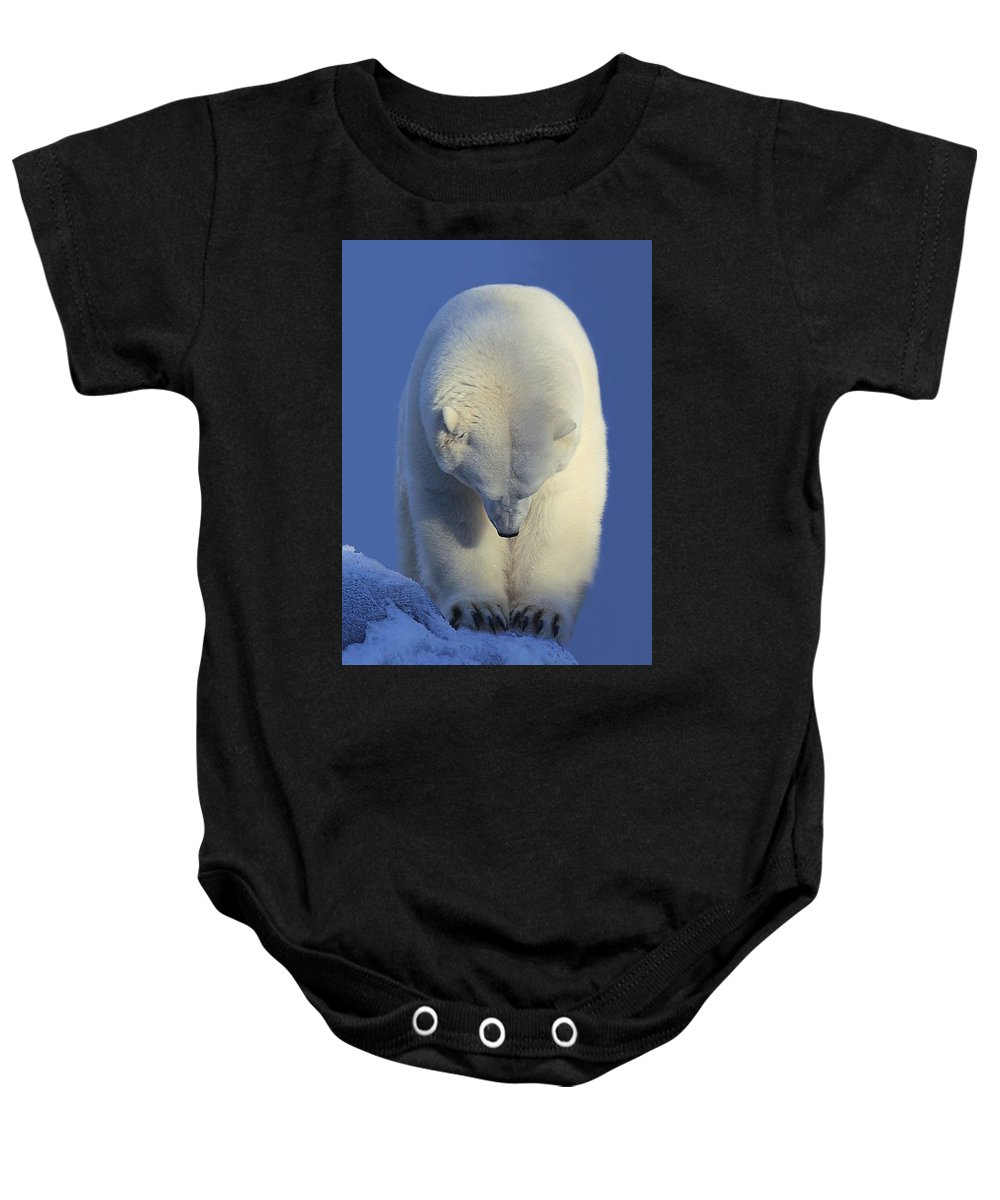 Polar Bear Baby Onesie featuring the photograph Contemplation Polar Bear by Shane Lamb