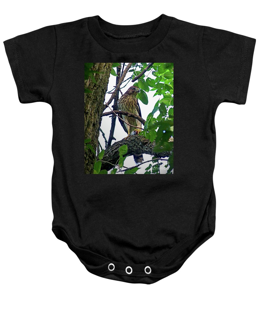 Color Photography Baby Onesie featuring the photograph Cooper Hawk by Sue Stefanowicz