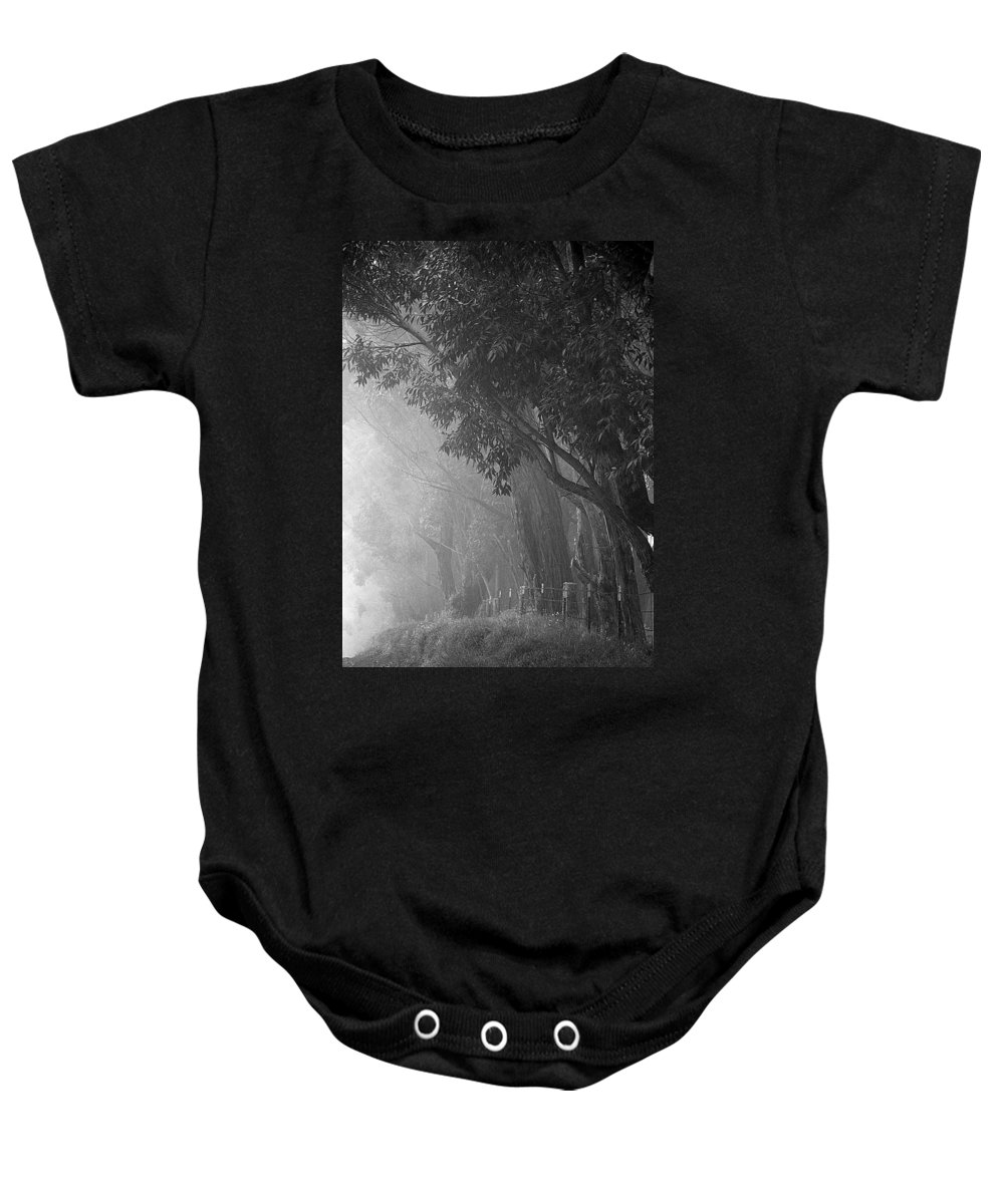 Trees Baby Onesie featuring the photograph Corridor Of Mist by Lori Seaman