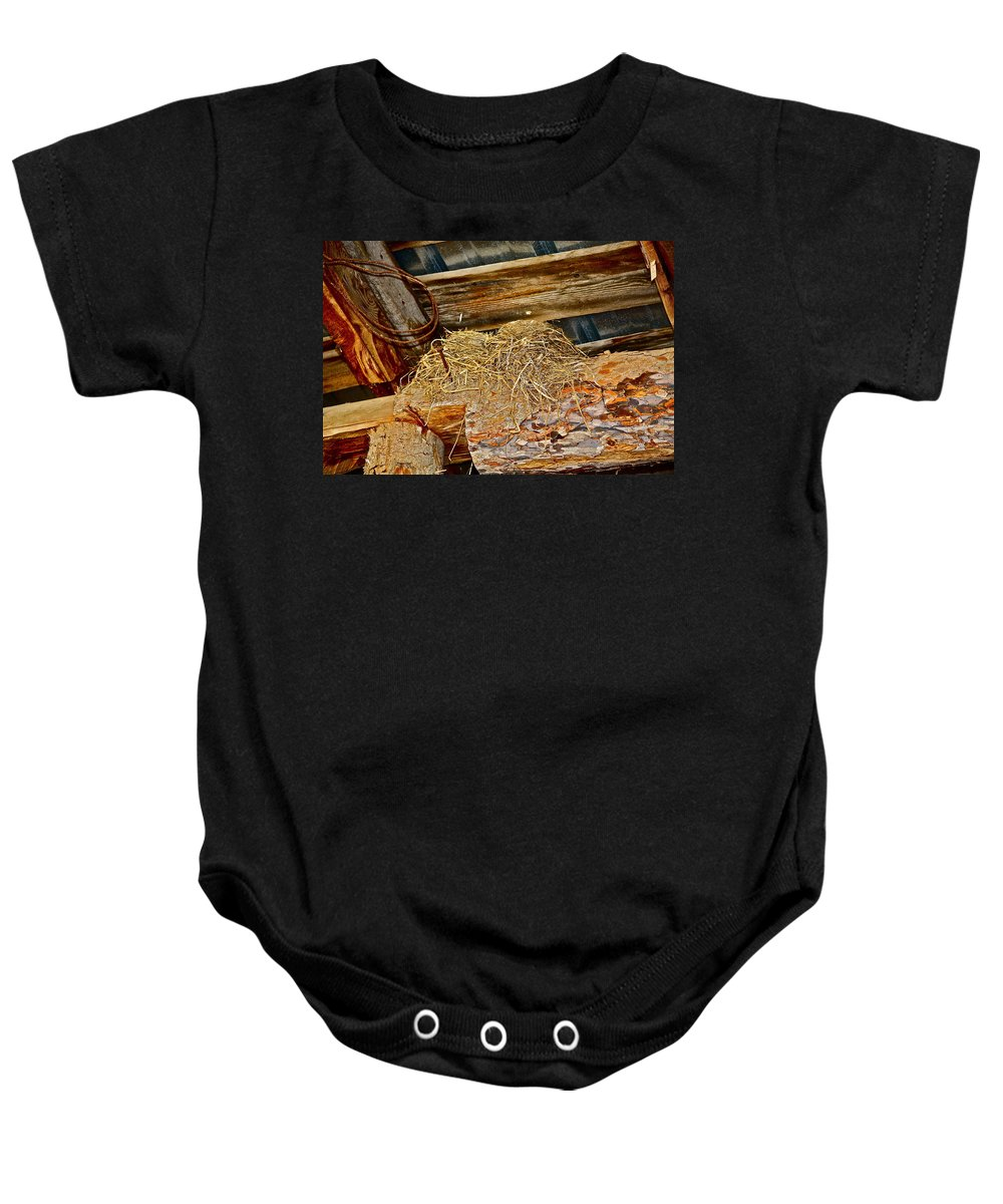 Birds Baby Onesie featuring the photograph Country Duplex by Diana Hatcher