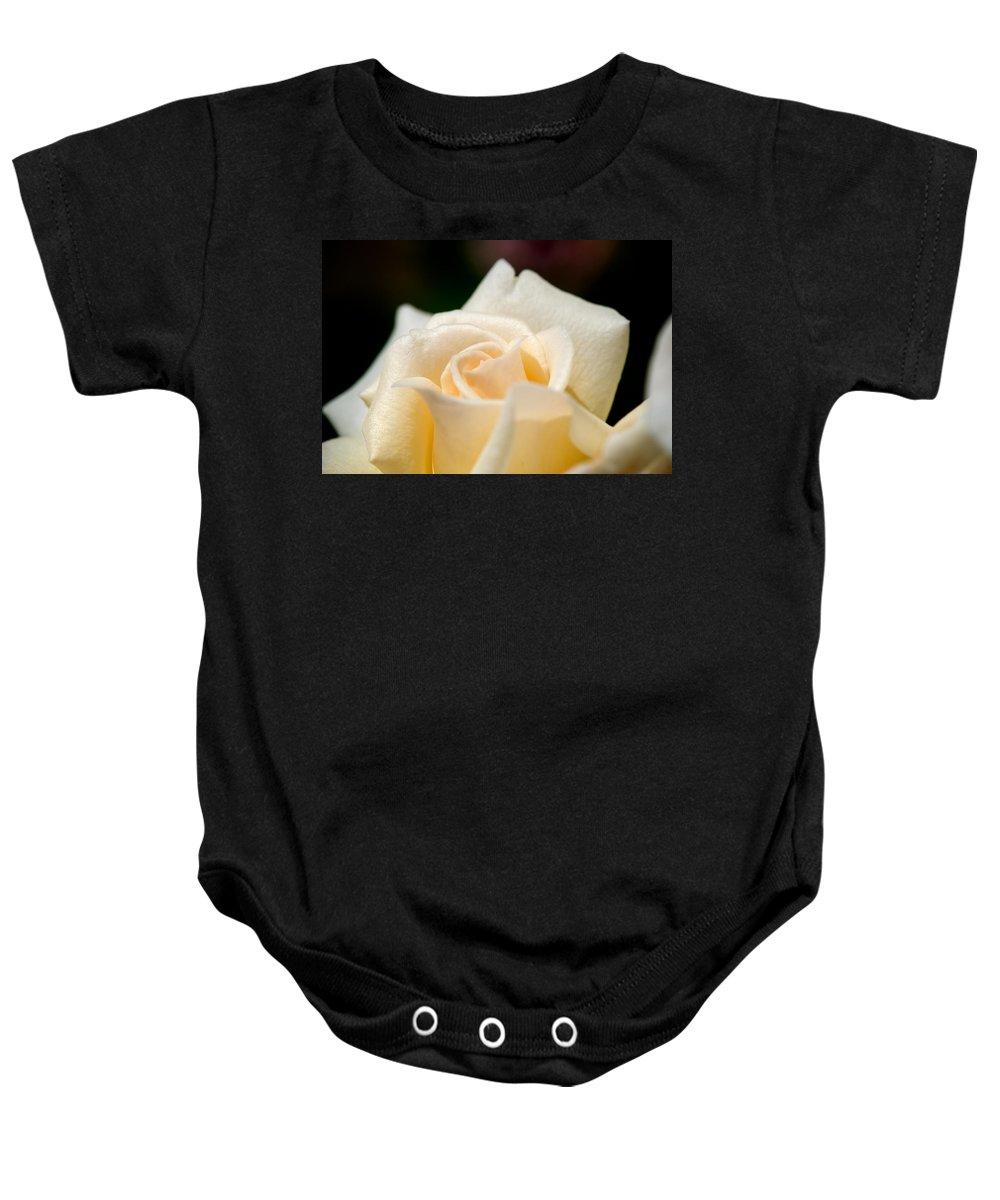 Lisa Knechtel Baby Onesie featuring the photograph Cream Rose Kisses by Lisa Knechtel