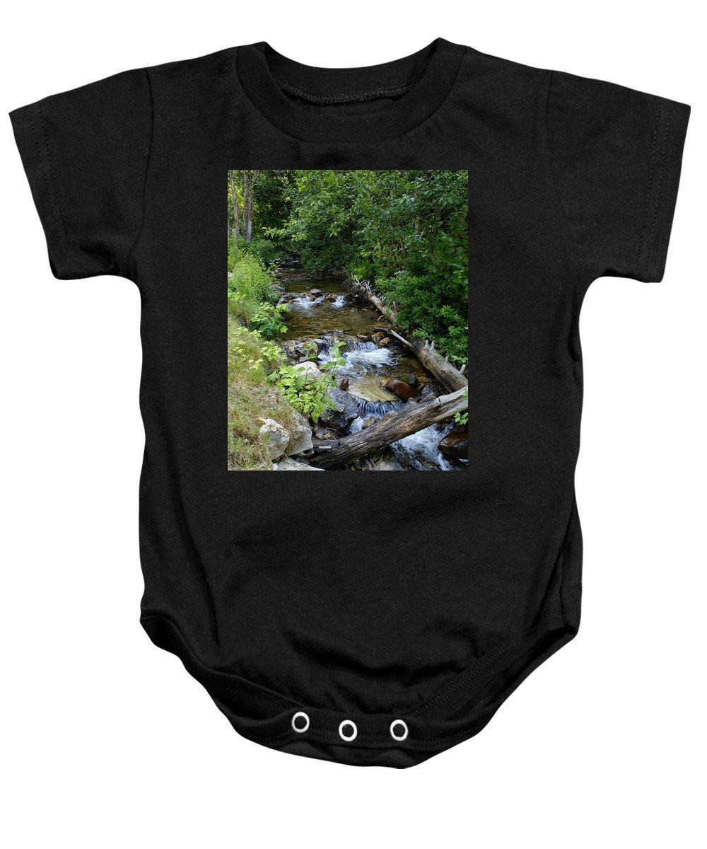 Nature Baby Onesie featuring the photograph Creek On Mt. Spokane 1 by Ben Upham III