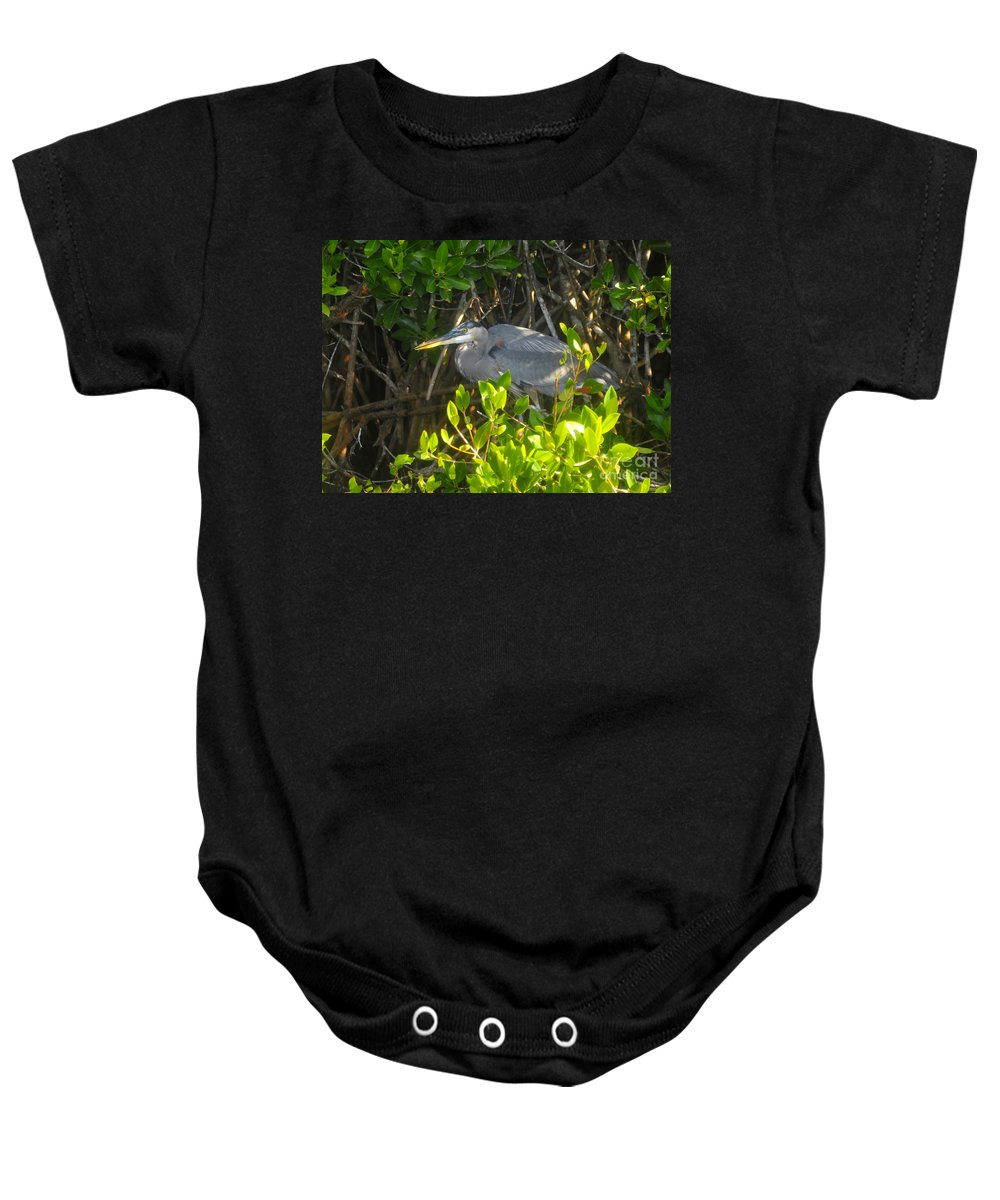 Great Blue Heron Baby Onesie featuring the photograph Cruising The Mangroves by David Lee Thompson