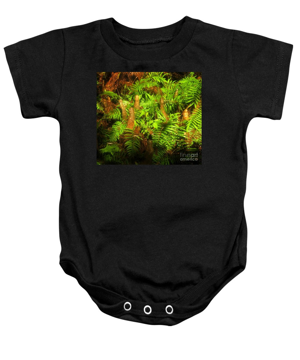 Bald Cypress Baby Onesie featuring the photograph Cypress Knees In Ferns by David Lee Thompson