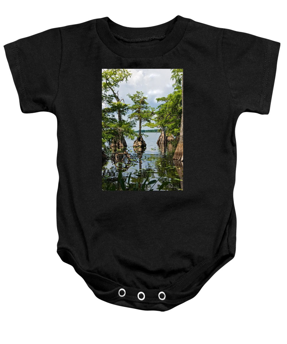 Trees Baby Onesie featuring the photograph Cypress Reflections by Christopher Holmes
