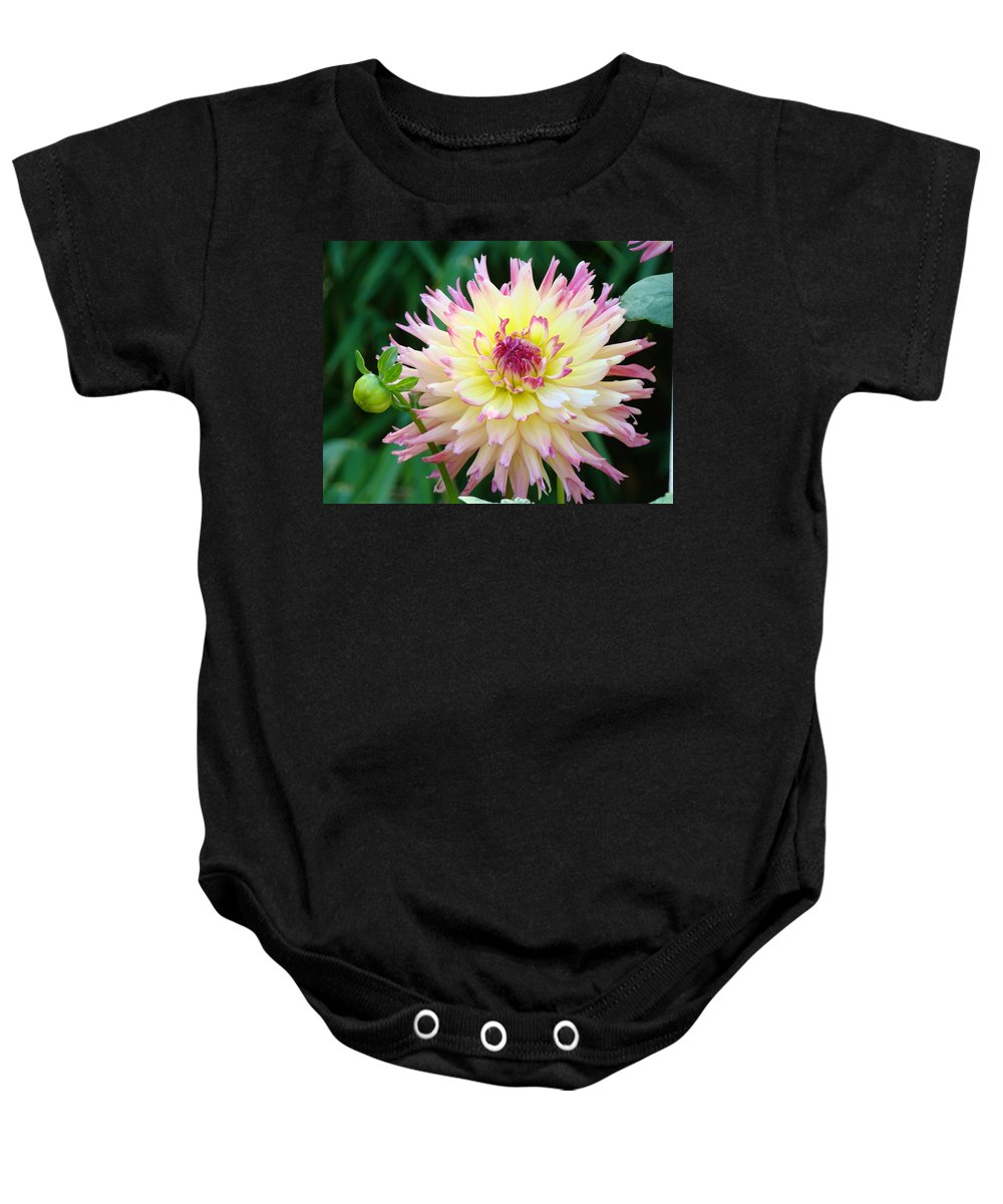 Flowers Baby Onesie featuring the photograph Dahlia Floral Pink Yellow Flower Garden Baslee Troutman by Baslee Troutman