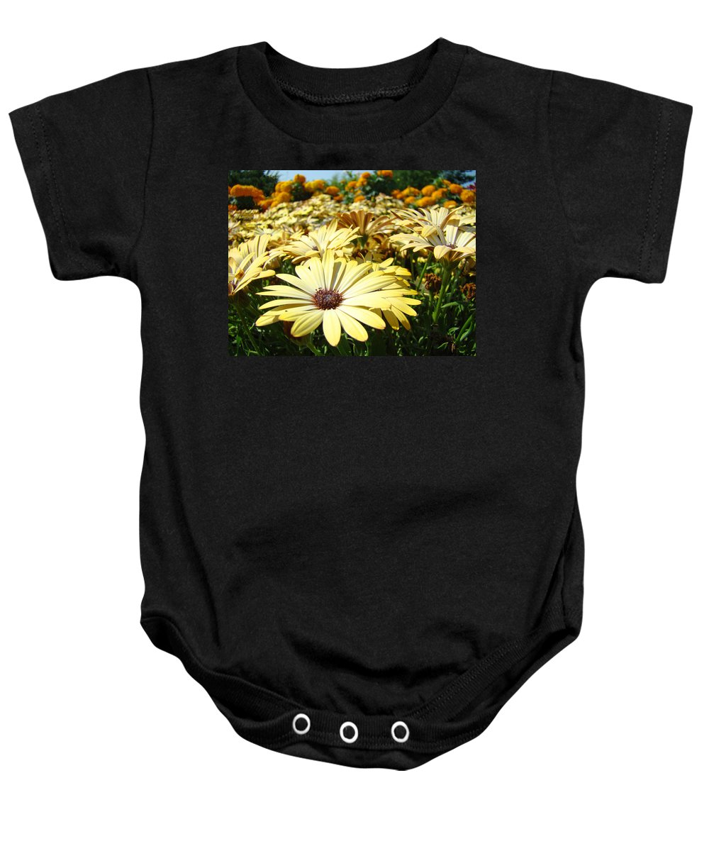 Daisy Baby Onesie featuring the photograph Daisies Yellow Daisy Flowers Garden Art Prints Baslee Troutman by Baslee Troutman