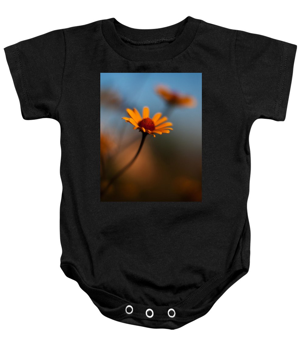 Daisy Baby Onesie featuring the photograph Daisy Standout by Mike Reid