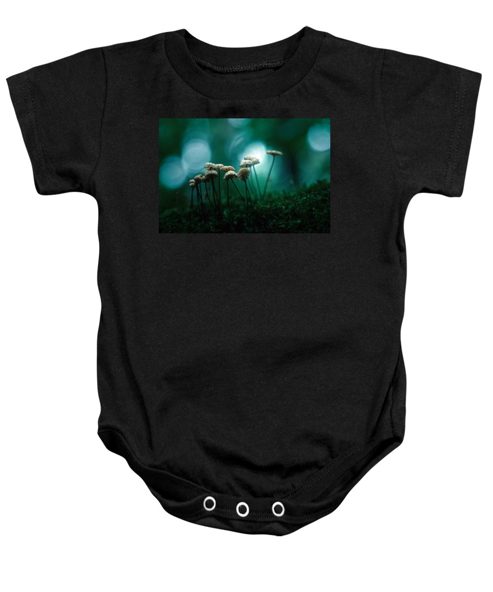 Parasol Mushrooms Baby Onesie featuring the photograph Dancing Parasol Mushrooms by Laurie Paci