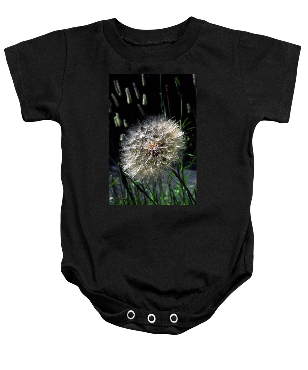 Seedball Of Common Dandelion Baby Onesie featuring the photograph Dandelion Seedball by Sally Weigand