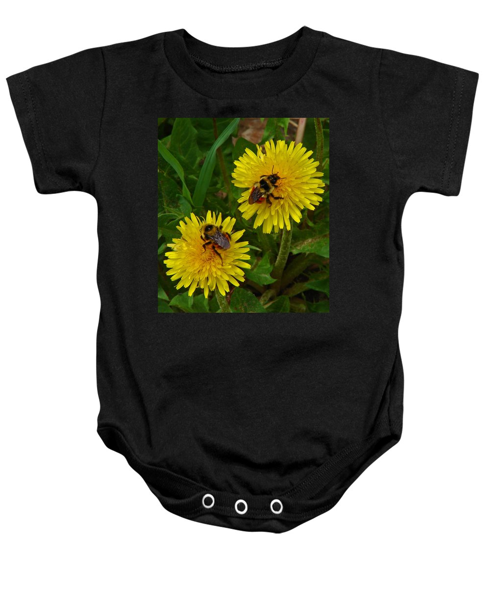 Dandelion Baby Onesie featuring the photograph Dandelions And Bees by Heather Coen