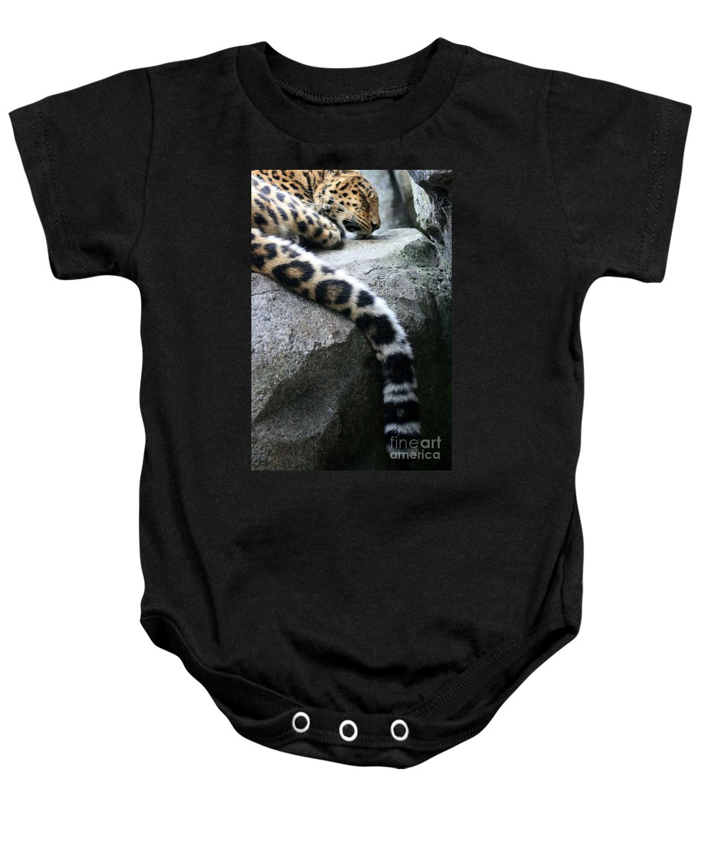 Leopard Baby Onesie featuring the photograph Dangling And Dozing by Mary Mikawoz