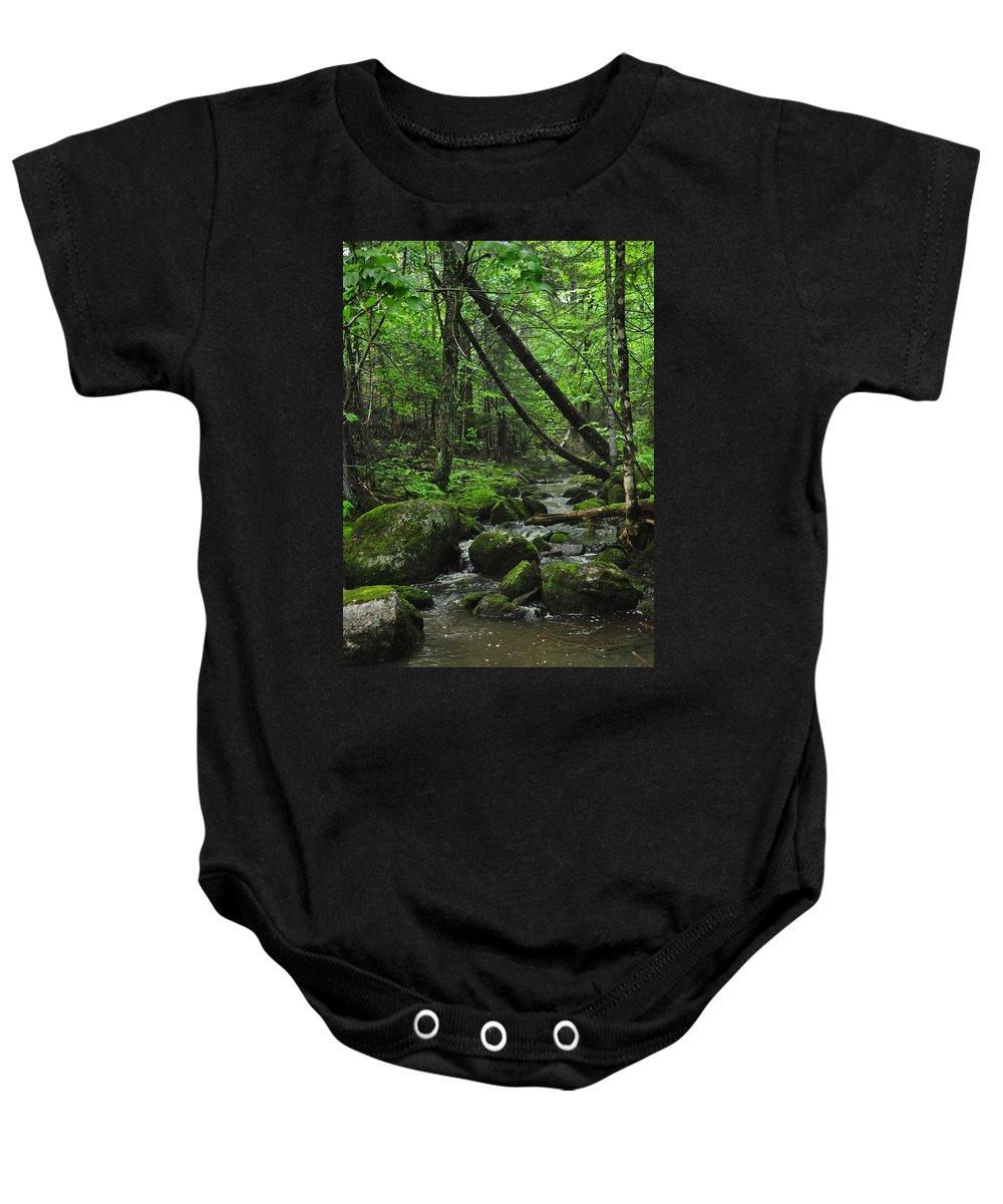Stream Baby Onesie featuring the photograph Deep Woods Stream 3 by Glenn Gordon