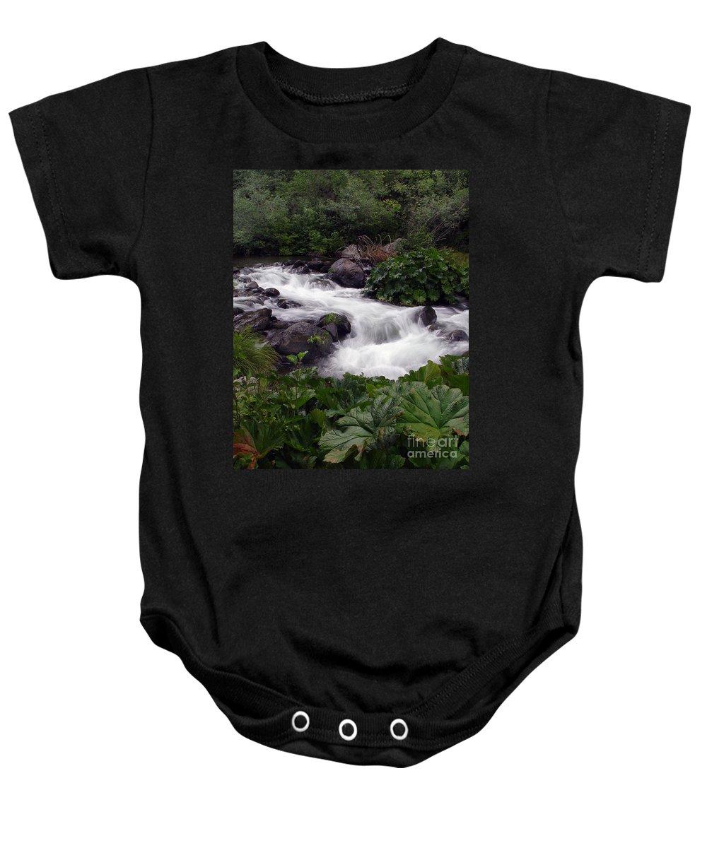 Creek Baby Onesie featuring the photograph Deer Creek 07 by Peter Piatt