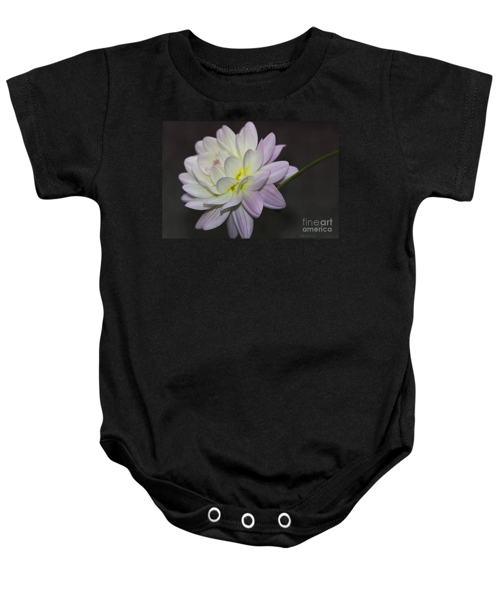 Flower Baby Onesie featuring the photograph Delicate Dahlia Balance by Deborah Benoit