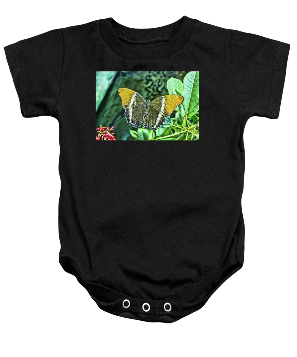 Delicate Baby Onesie featuring the photograph Delicate by Steven Parker