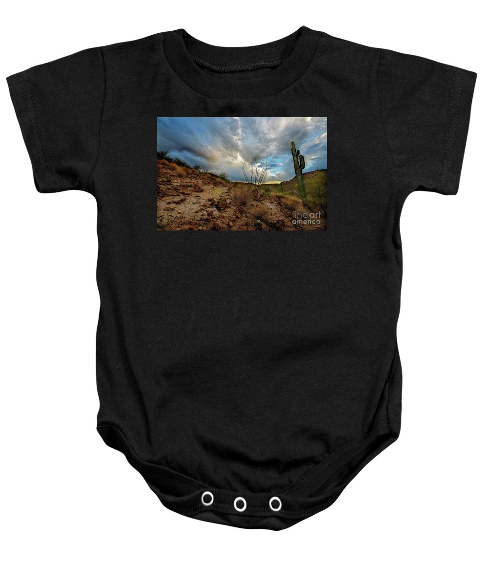 Cactus Baby Onesie featuring the photograph Desert Landscape With Clouds by David Arment
