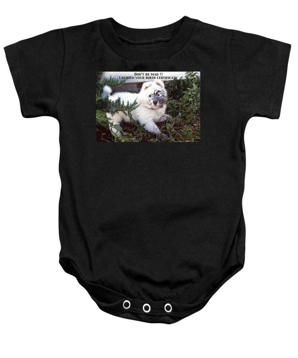 Samoyed Baby Onesie featuring the photograph Dirty Dog Birthday Card by Ginny Barklow