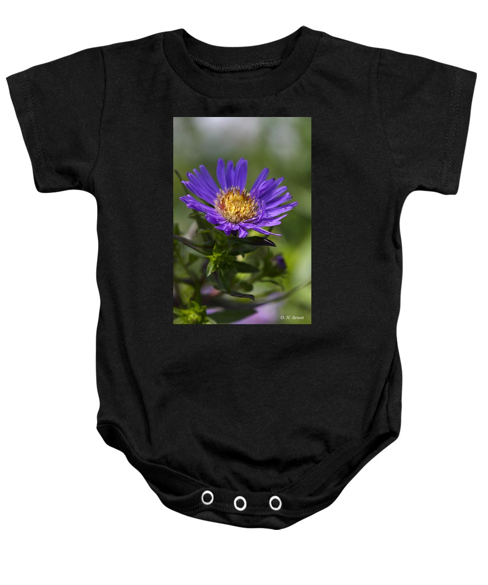 Flower Baby Onesie featuring the photograph Display Of Softness by Deborah Benoit