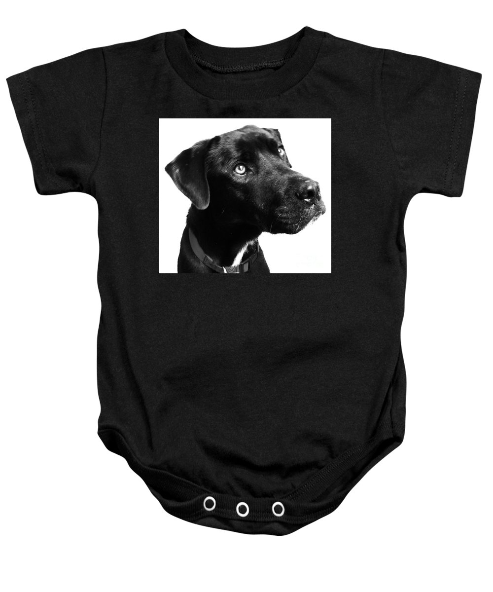 Dogs Baby Onesie featuring the photograph Dog by Amanda Barcon
