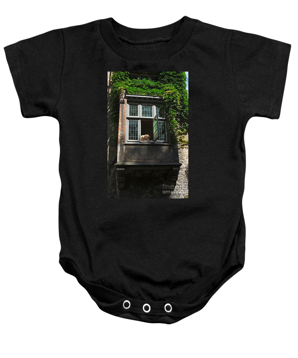 Dog Baby Onesie featuring the photograph Dog In A Window Above The Canal In Bruges Belgium by Louise Heusinkveld