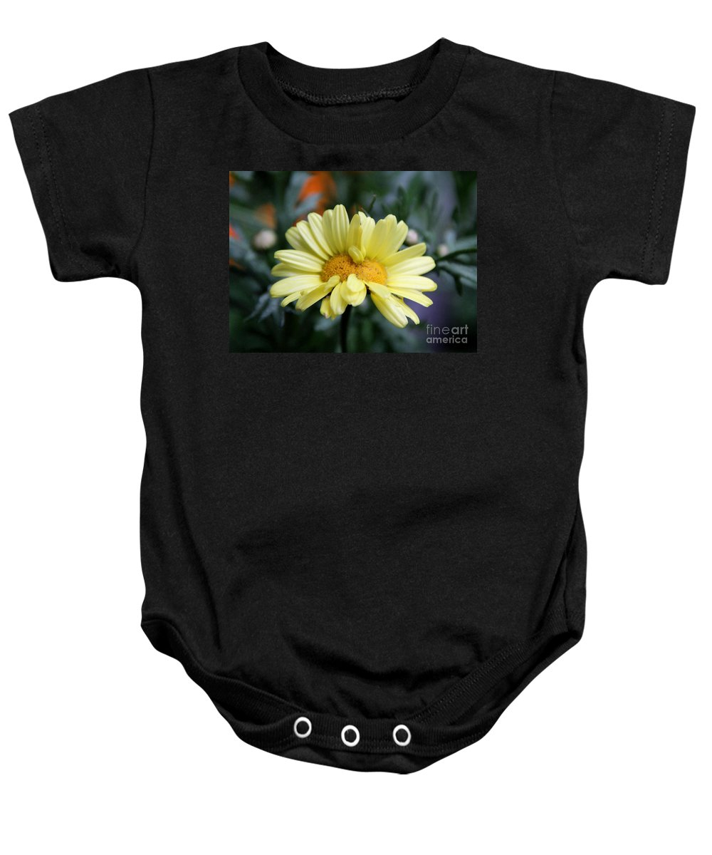 Double Chrysanthemum Baby Onesie featuring the photograph Double Chrysanthemum by Sergey Lukashin