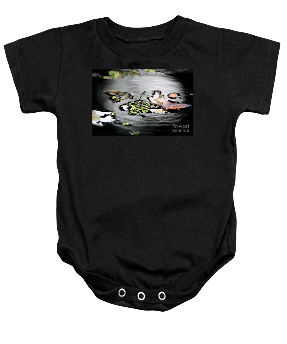 Dragonfly Baby Onesie featuring the photograph Dragonfly Above Leaves by Matt Suess
