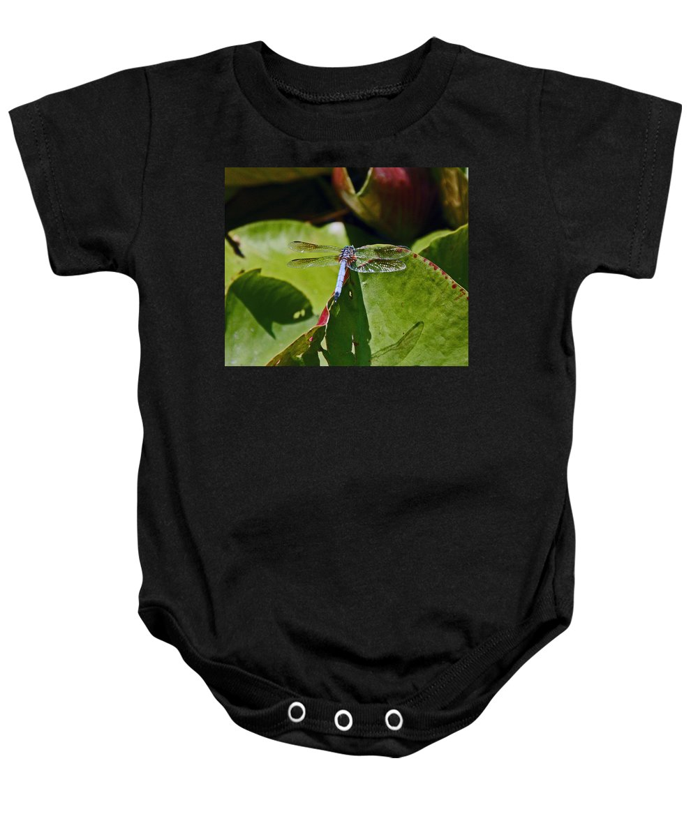 Baby Onesie featuring the photograph Dragonfly by David Campbell