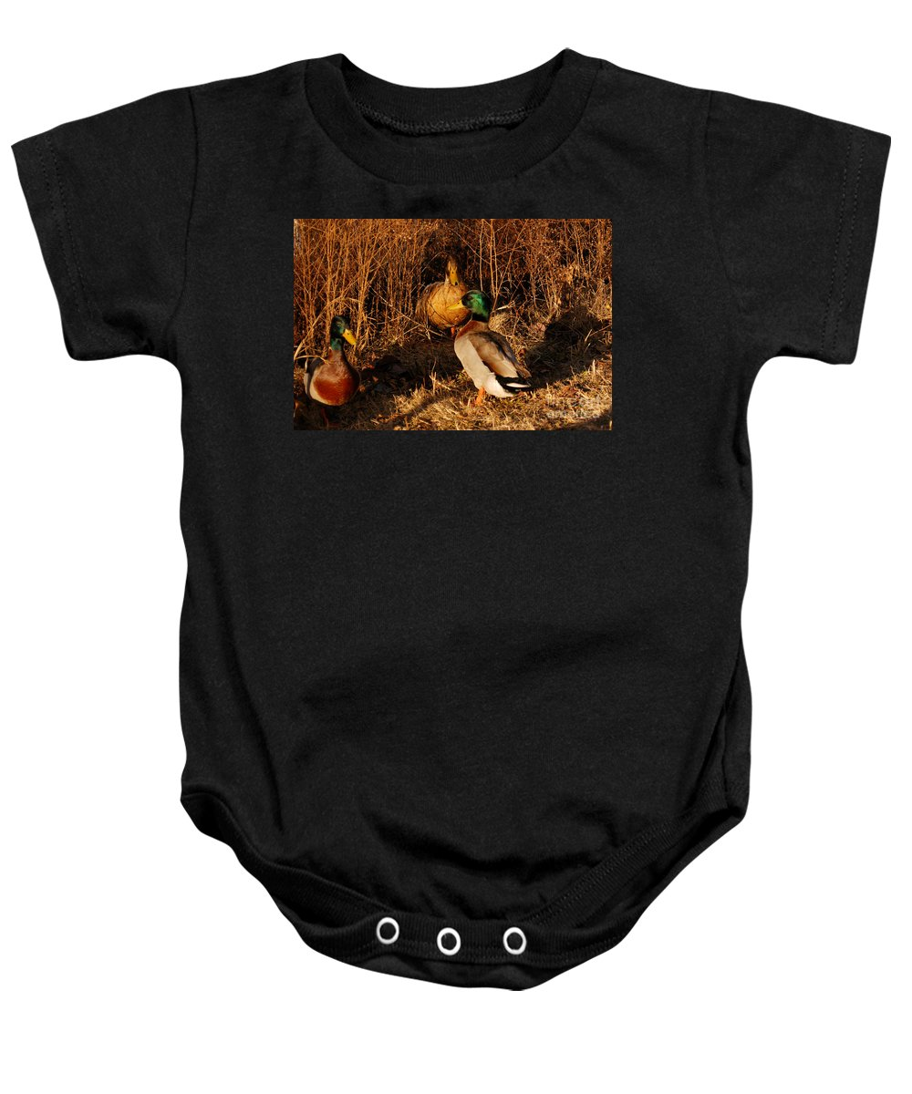 Clay Baby Onesie featuring the photograph Ducks At Dusk by Clayton Bruster