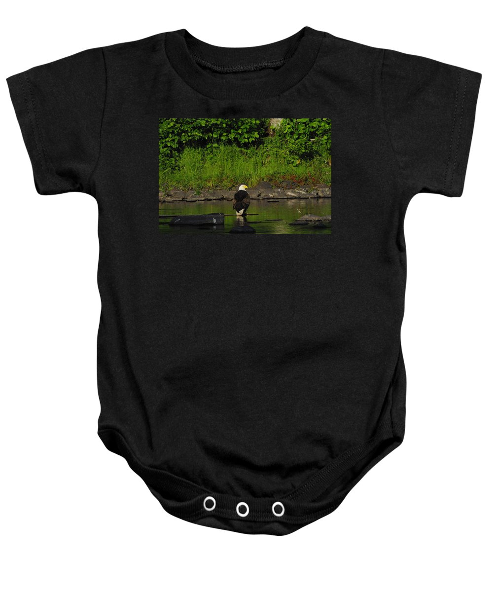 Eagle Baby Onesie featuring the photograph Eagle On River Rock II by Alice Markham