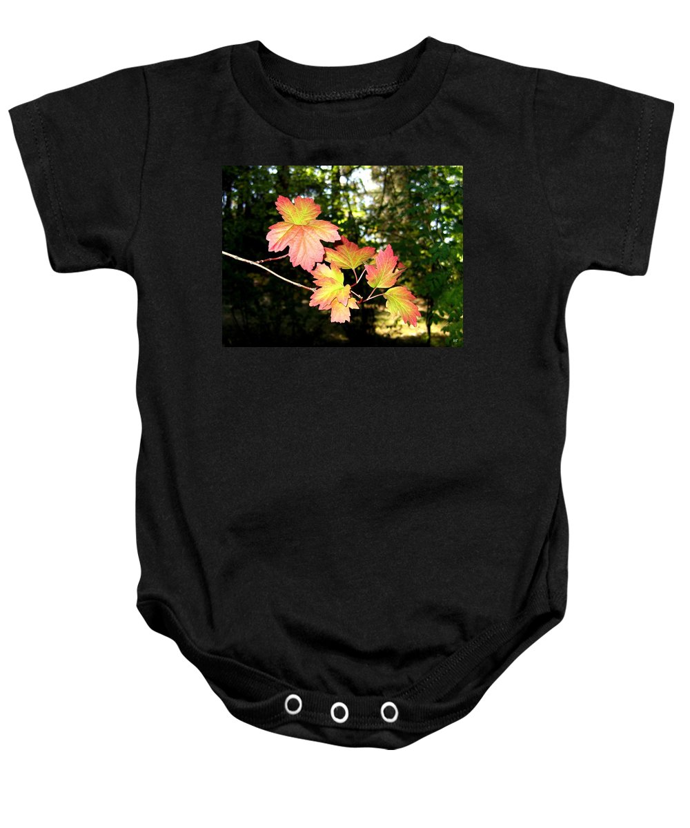 Autumn Baby Onesie featuring the photograph Early Days Of Autumn by Will Borden