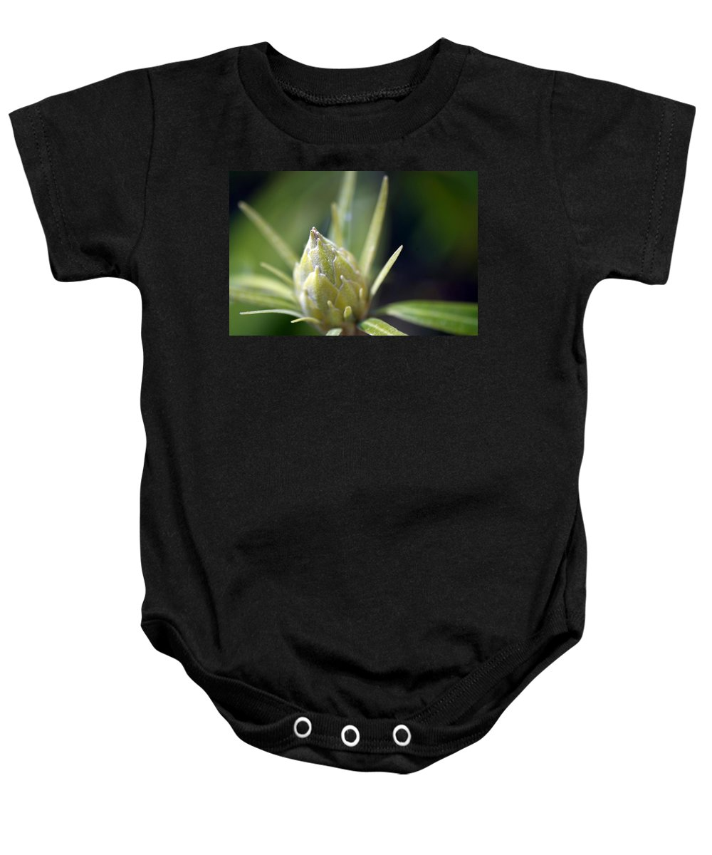 Macro Baby Onesie featuring the photograph Earstwhile by Lawrence Nunziato