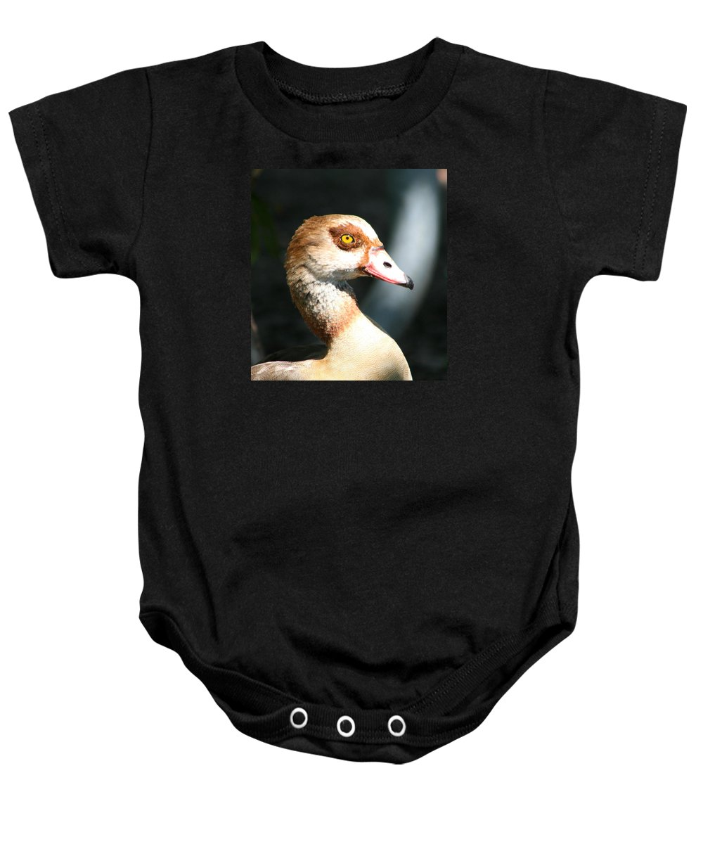 Egyptian Goose 2 Baby Onesie featuring the photograph Egyptian Goose 2 by Delphine Ross