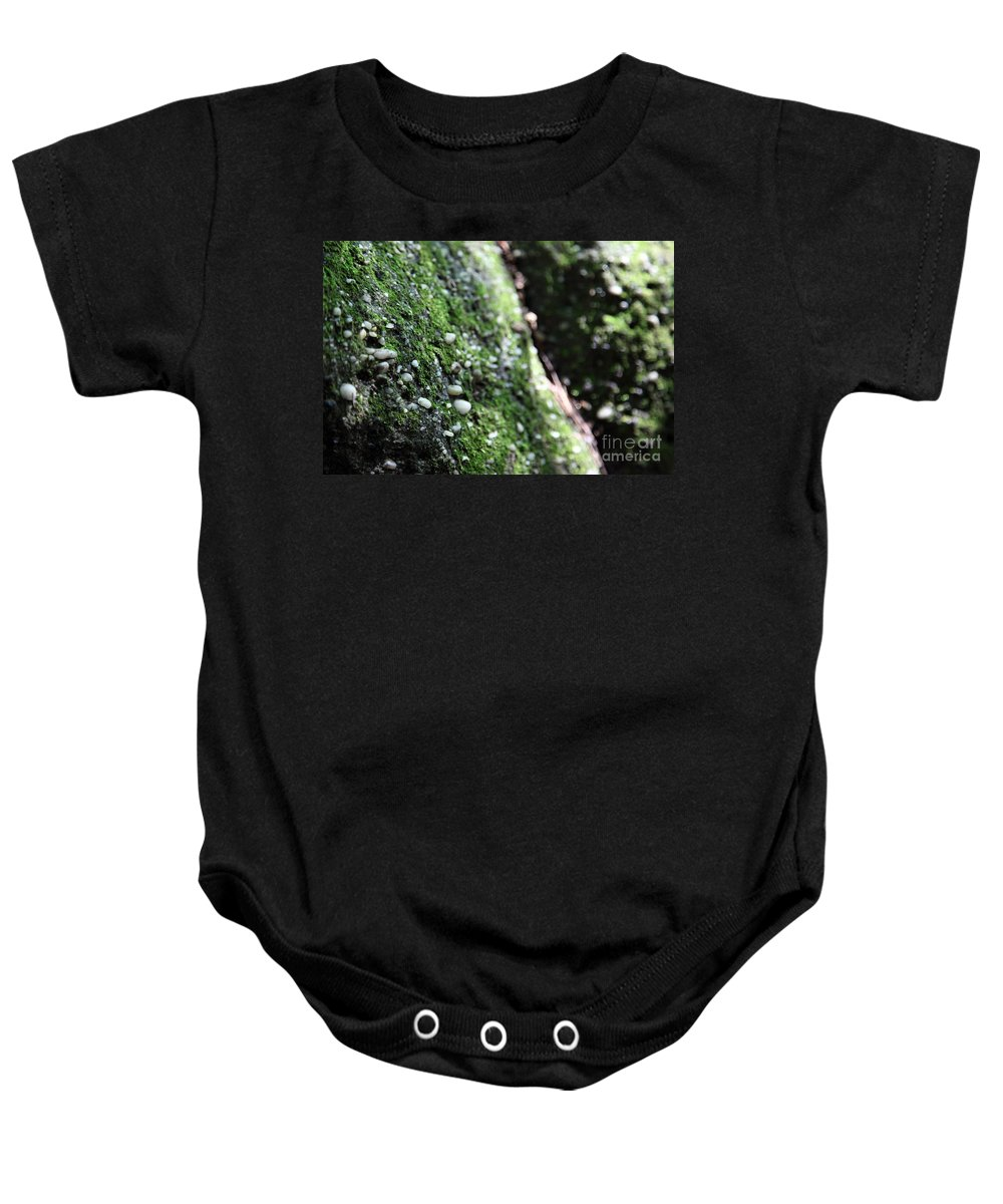 Rocks Baby Onesie featuring the photograph Embedded by Amanda Barcon