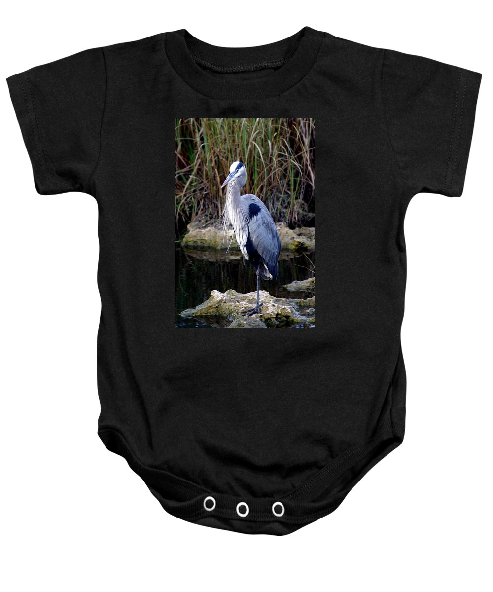 Everglades Baby Onesie featuring the photograph Everglades Heron by Marty Koch