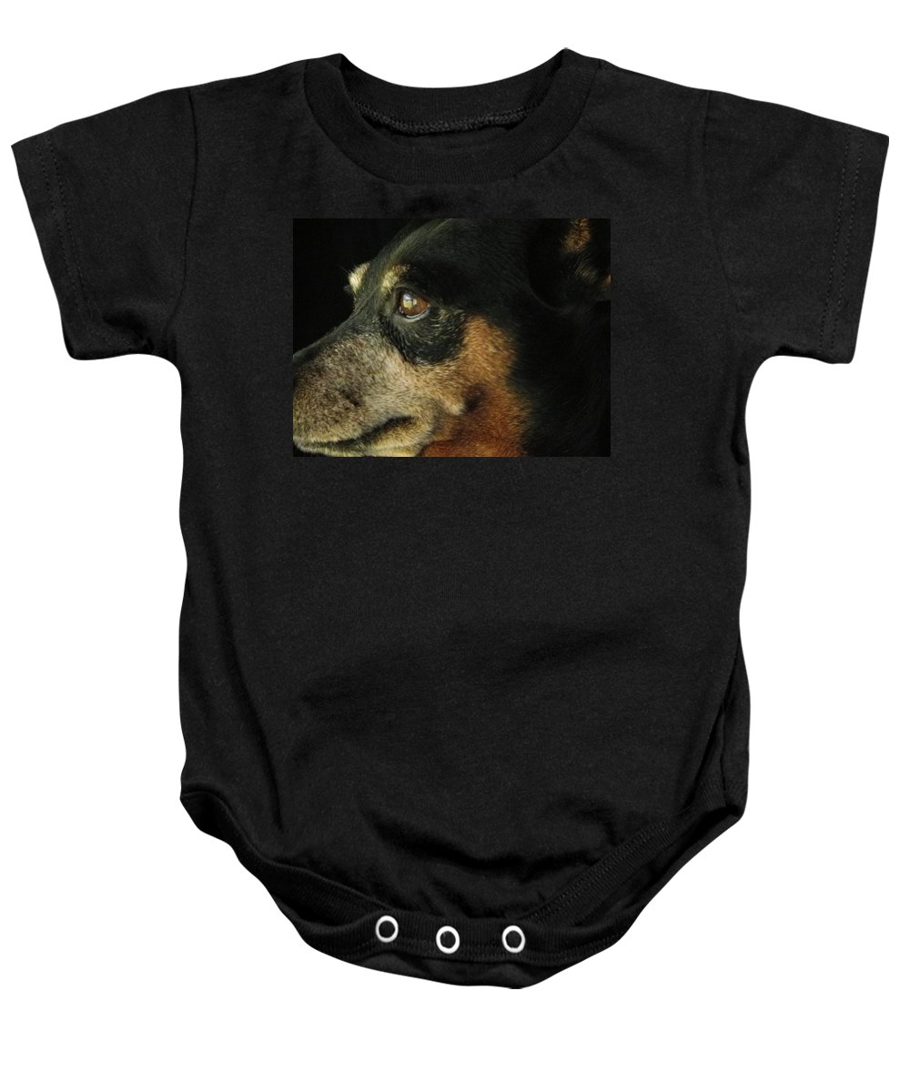 Animal Baby Onesie featuring the photograph Experienced Guard by Charleen Treasures